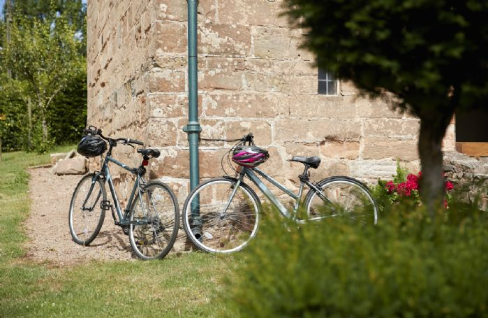 There are two hybrid bicycles (one men's and one ladies') available to use.