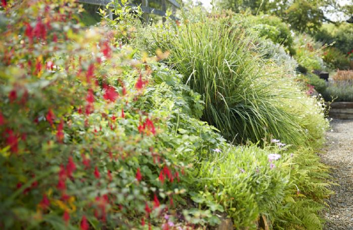 Enjoy peace and tranquility in The Dairy's courtyard garden