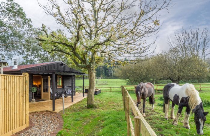 A tranquil place to relax in, with only the horses grazing in the paddocks for company