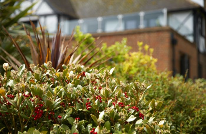 Lauriston has nearly one acre of enclosed landscaped gardens