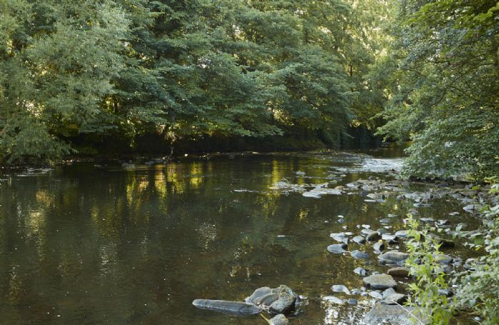 The tranquility of the River Derwent