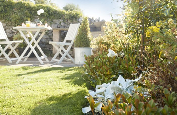 Winsmore Cottage has a beautiful rose garden in a tranquil setting