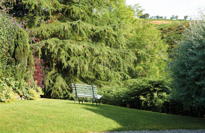Two-acre garden