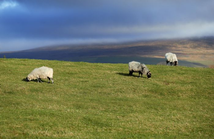 The breathtaking beauty of the Eden Valley
