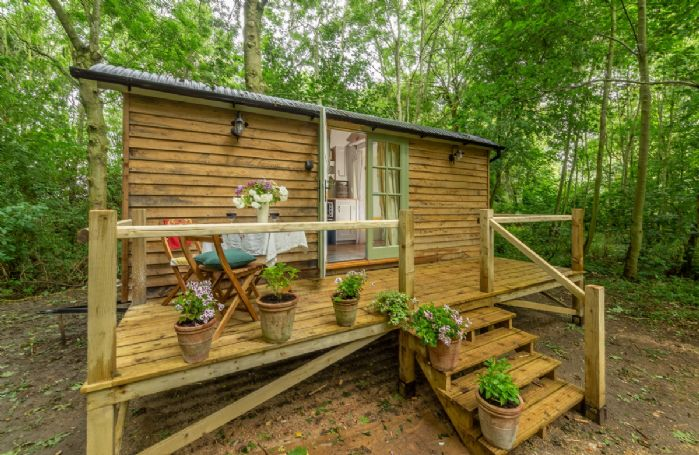 Woodland Retreat Shepherd's Hut situated in a peaceful and picturesque wood