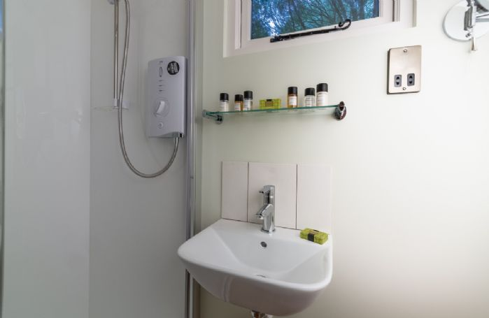 Shower room with electric shower, wash basin and wc
