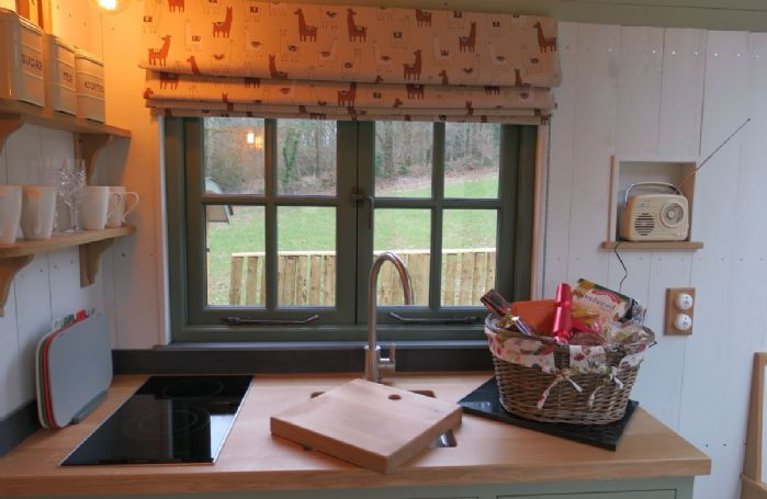 The oak finished kitchenette with radio and peaceful woodland views