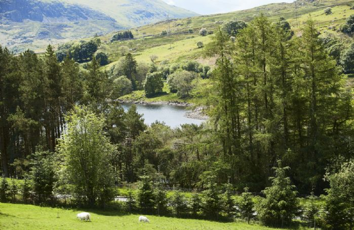 Stunning views of the mountains of Arenig Fach and Fawn as well as Lake Celyn