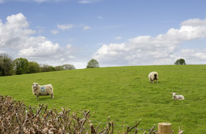 Stunning countryside views and walks on your doorstep