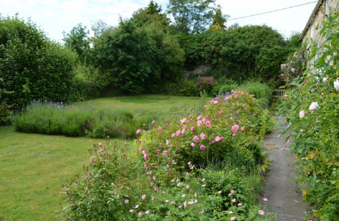 The tranquil gardens at Coral Cottage