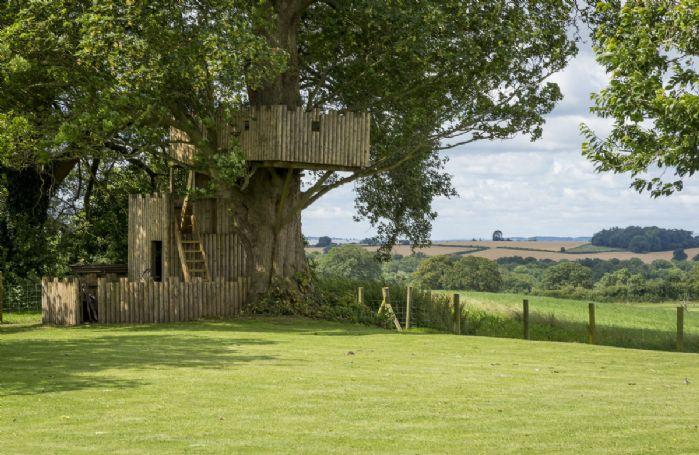 Tree house observation area
