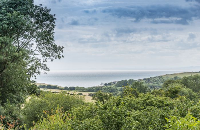 The view across Seatown and beyond