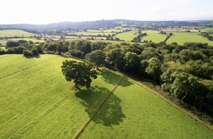 The property sits on Downclose Farm and guests are welcome to explore the farmland and woods