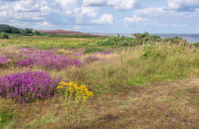 Dunwich Heath just 20 minutes from Walpole