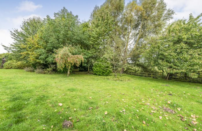 Large lawned garden perfect for games and exploring