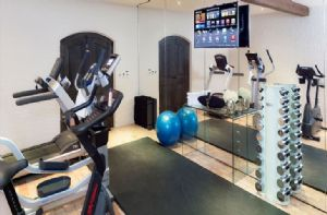 The gym with a treadmill, rowing machine, cross trainer and weights