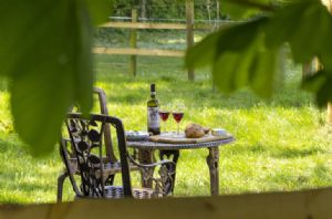 Guests staying at Cedar Tree have private access to a paved patio with table and chairs, perfect for al fresco dining