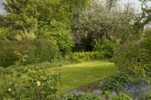Enjoy Myrtle Cottage's beautiful gardens