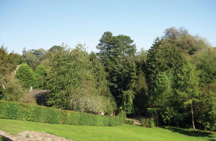 The garden which comprises a patio, very large sloping lawn and 2 ponds (low fence - parents with young children beware)
