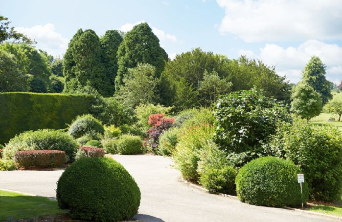 10 acres of beautifully landscaped gardens