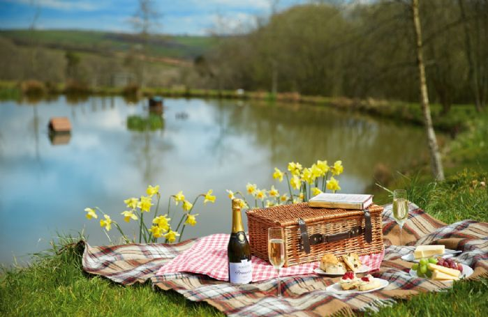 Sit and relax by the lake with a picnic