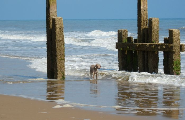 Trimingham beach