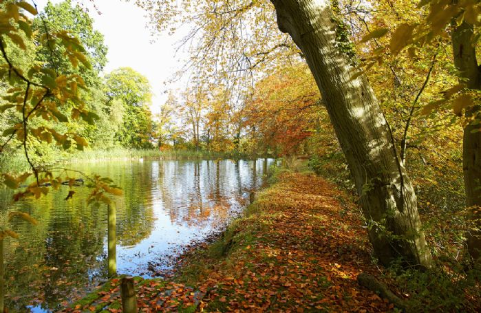 There are extensive gardens including a stream, lawns, ponds and woodland