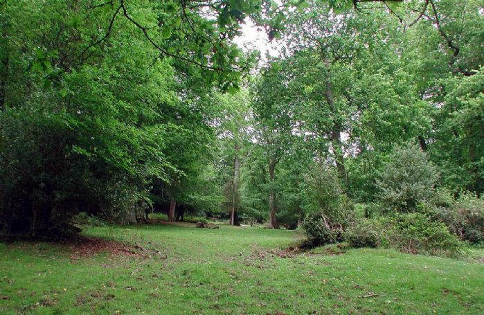 Surrounded by forest in a very quiet position you can walk from the front door in all directions, no roads, just woodland and heath land where ponies graze