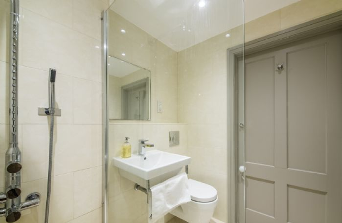 Ground floor: Vapour shower room, basin and wc
