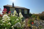 Thumbnail Image - Dungeness