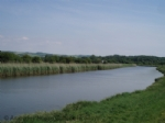 Thumbnail Image - Looking upstream with the South Downs in the distance