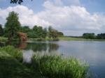 Thumbnail Image - Petworth Park