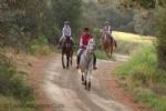 Horse Riding in Lysos