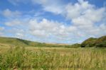 Thumbnail Image - Countryside surrounding West Dean