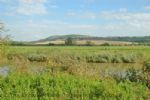 Thumbnail Image - South Downs countryside around Bury