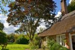 Thumbnail Image - The gardens surrounding the cottage