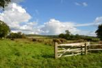 Thumbnail Image - Walking paths surround this area in the South Downs National Park