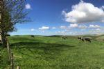 Thumbnail Image - South Downs National Park views at Telscombe