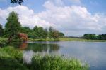 Thumbnail Image - The lake in Petworth Park