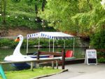 One of the Swan boats on Peasholm lake.