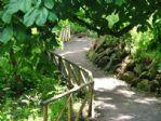 The walk down toward the Italian Gardens.