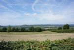 Wonderful views from the garden