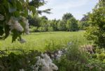 Lovely walled garden with feature pond and trees, overlooking fields