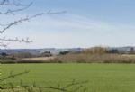Superb pastoral landscape