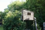 Children's treehouse in the garden