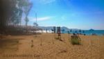 Local Beach and Cafe (1.5km)