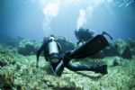 Scuba Diving Available
