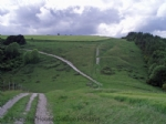 Thumbnail Image - The South Downs Way near Harting Down