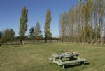 Outside: Communal picnic area