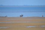 Local area: Old Hunstanton beach